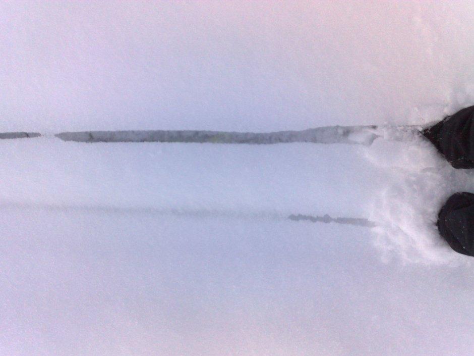 Tråkking av skispor